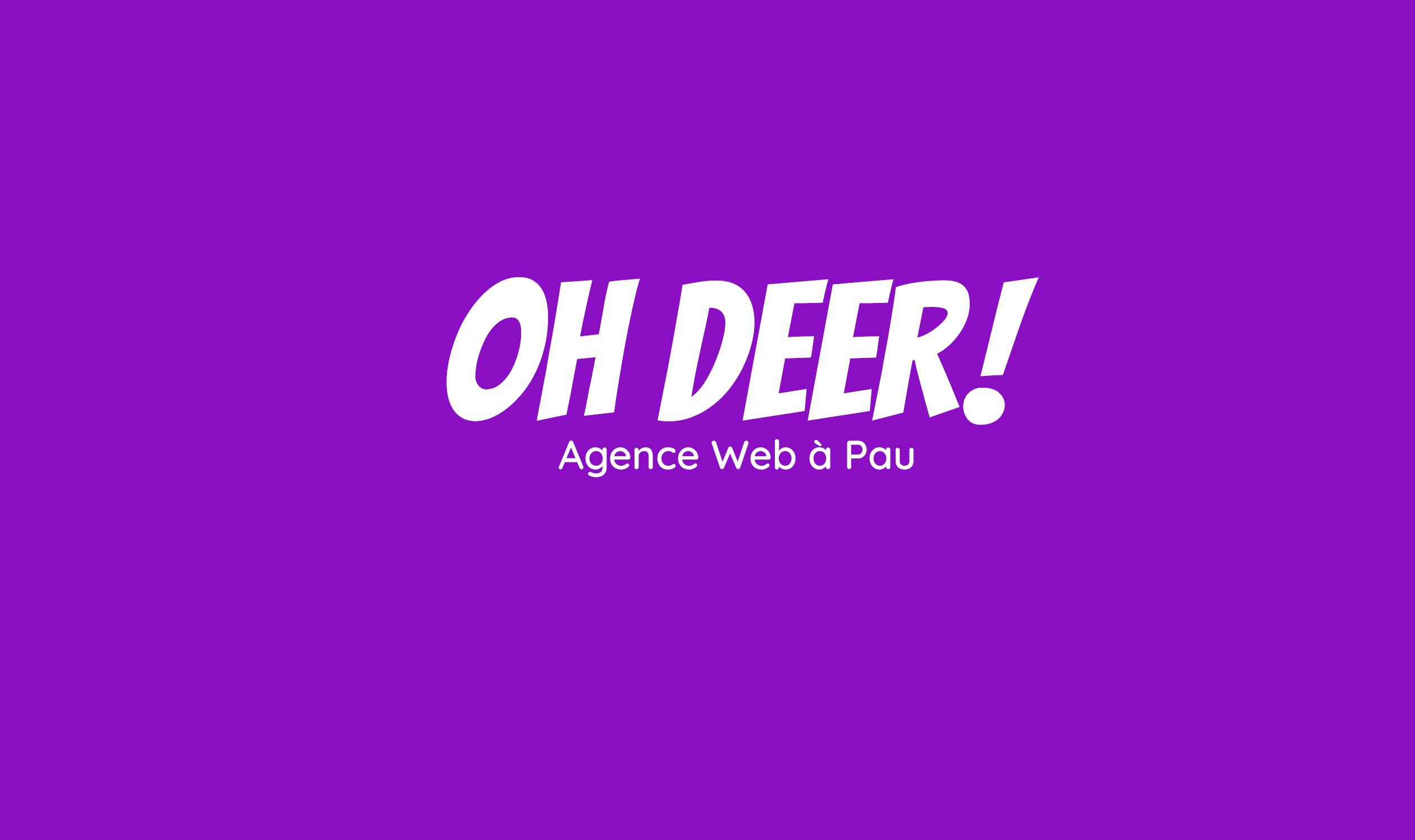 Agence web Pau,création site web